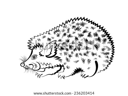 Vector sketch of forest hedgehog on white background.