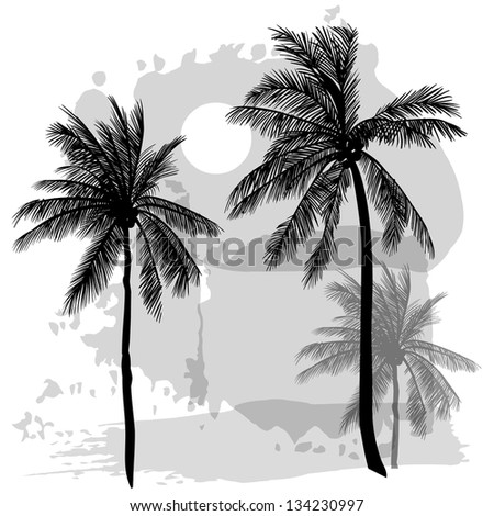 Vector sketch with palms