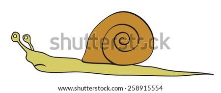 Vector Snail  - stock vector
