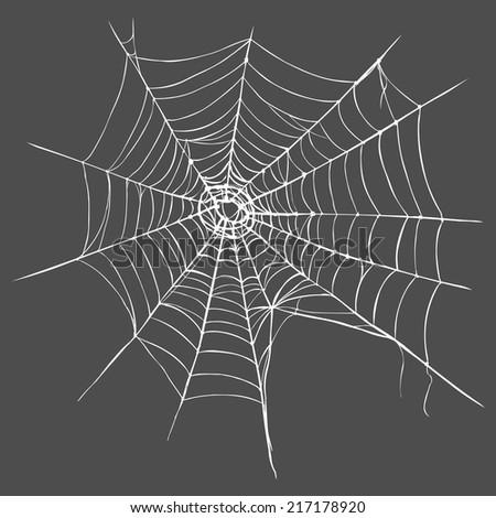 Vector Spider's Web on Dark Gray Background - stock vector