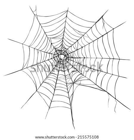 Vector Spider's Web on White Background - stock vector