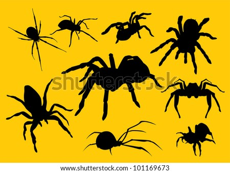 vector  spiders silhouette