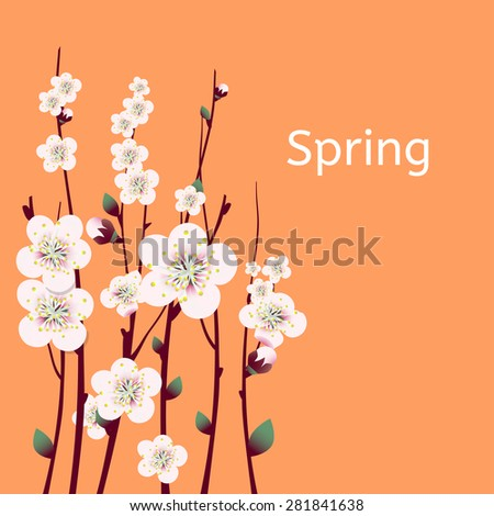 Vector spring  apricot blossoming branch on bright green background