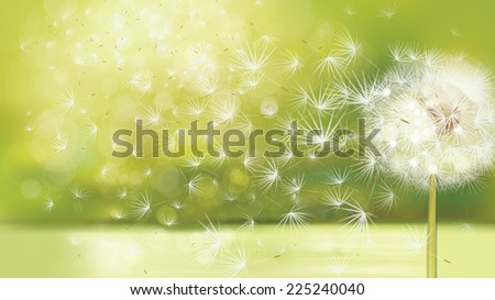 Vector spring background with white dandelion. - stock vector