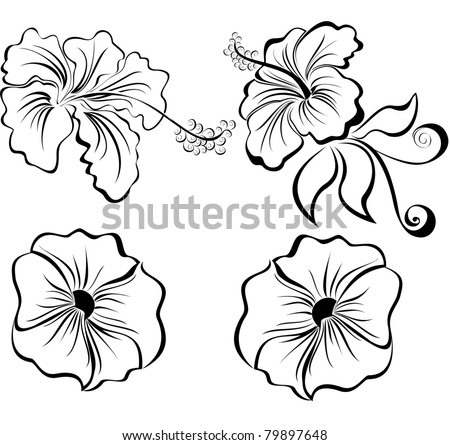 Vector stylized black and white flowers isolated on white background - stock vector