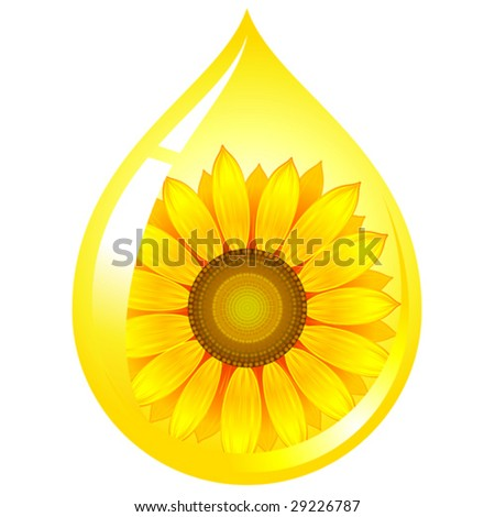 vector sunflower-seed oil drop - stock vector
