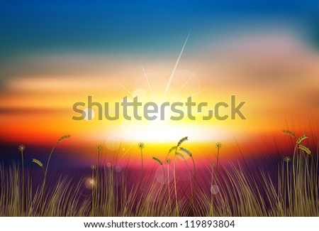 vector sunset - stock vector