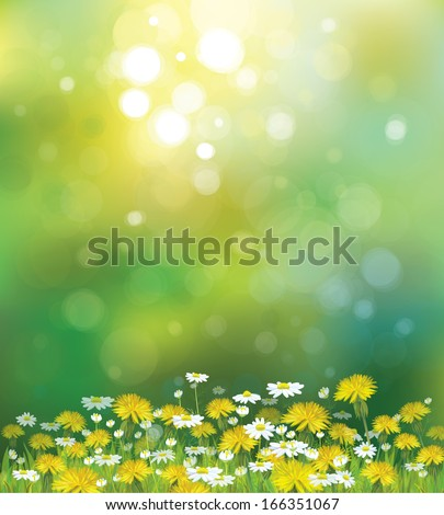 Vector sunshine background with chamomiles and dandelions.