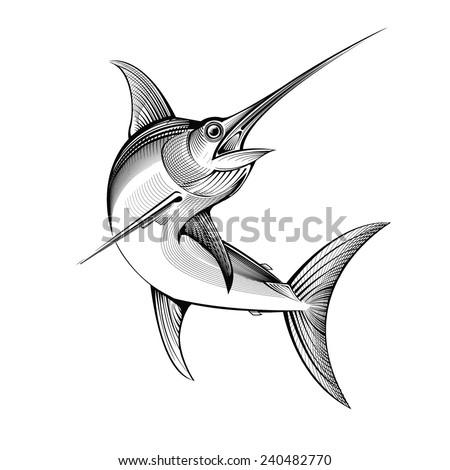 vector swordfish  - stock vector