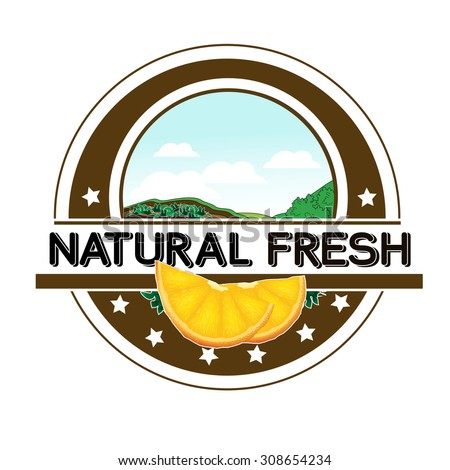 Vector symbol - natural fresh label - nature abstract element with orange, bio organic simple design in the circle  - stock vector