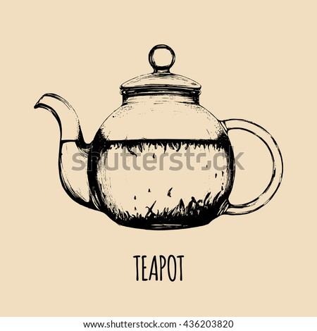 Vector teapot illustration. Hand drawn glass kettle with tea. Isolated transparent tea pot sketch. Cafe, restaurant beverages menu. - stock vector