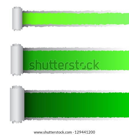Vector tear paper in green color, eps10 illustration - stock vector