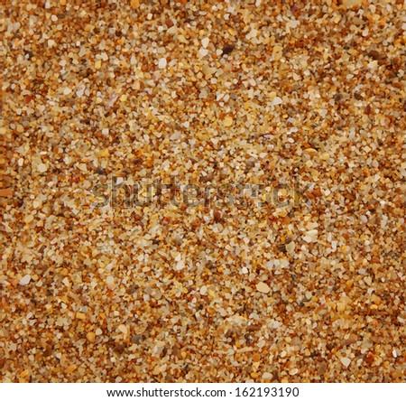 vector texture (sand) - stock vector