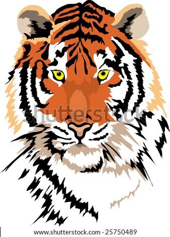 vector tiger - stock vector