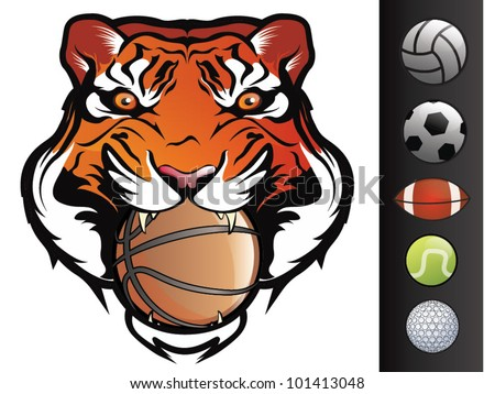Vector Tiger Sports Mascot with Ball in Mouth - stock vector