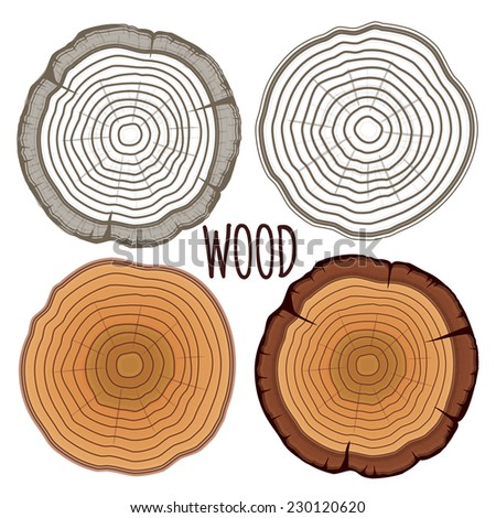 Vector tree rings, cuts of tree trunks in bark - stock vector