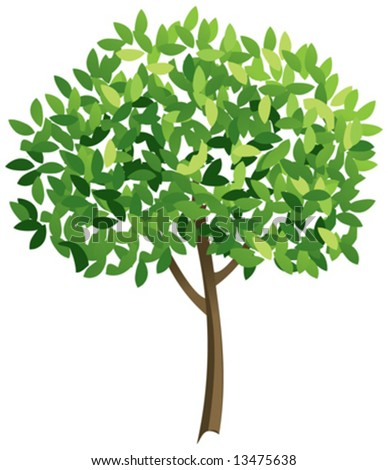 Vector tree with leaves - stock vector