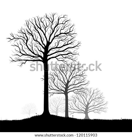 Vector trees silhouette, flowers and grass, black and white vectorial shape, fog at the background