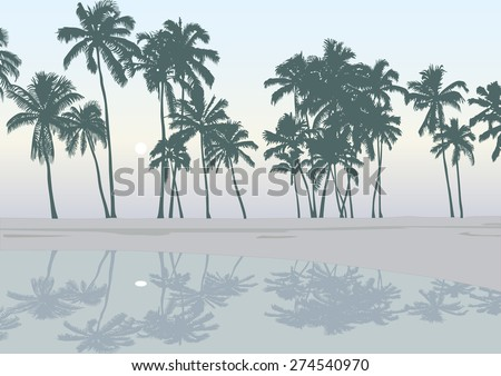 Vector tropical palm tree silhouette bright illustration - stock vector