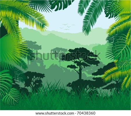 Vector tropical rainforest - stock vector