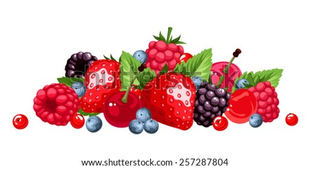 Vector various berries isolated on a white background. - stock vector