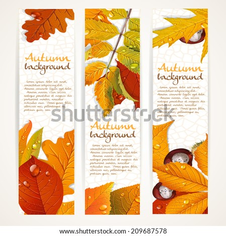 Vector vertical autumn leaves banners - stock vector