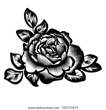 vector vintage black and white rose flower in style engraving