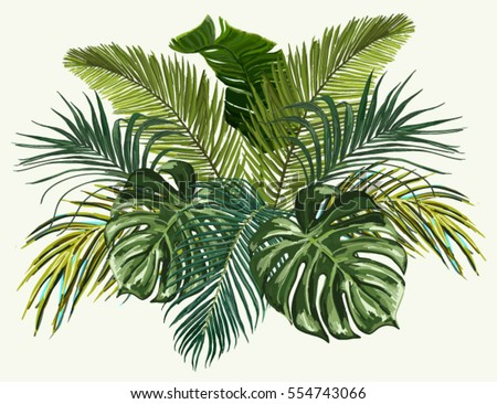 Vector Vintage Composition With Exotic Leaves Botanical Classic Illustration Perfect For Wallpapers Web