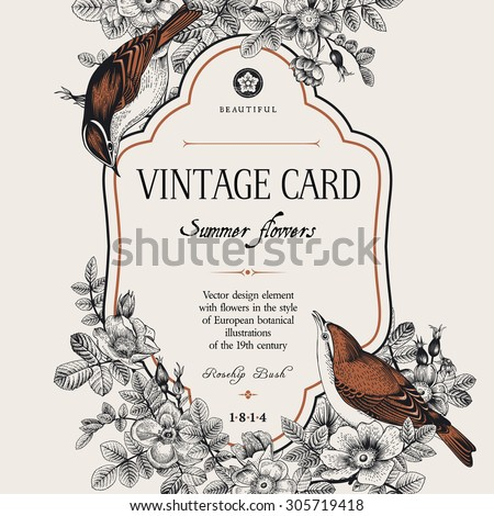 Vector vintage floral card. Two birds in the wild rose bushes. - stock vector