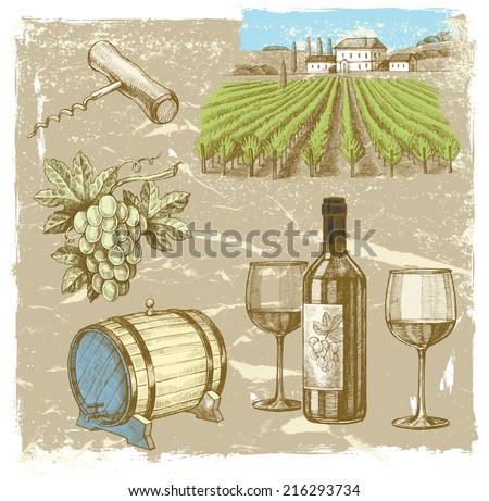 vector vintage hand drawn illustration of wine - stock vector