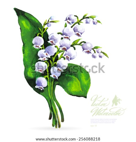 Vector watercolor flower on white backdrop. Isolated beautiful purple lily of the valley. - stock vector