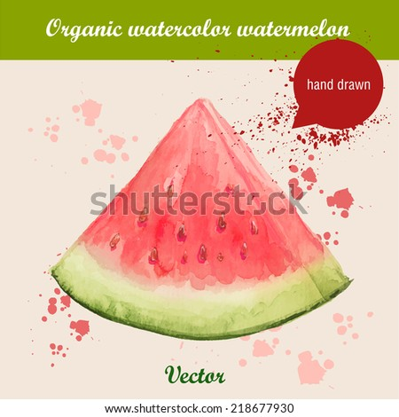 Vector watercolor hand drawn slice of watermelon with watercolor drops. Organic food illustration. - stock vector