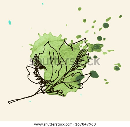 Vector watercolor hand drawn vintage illustration of leaf - stock vector