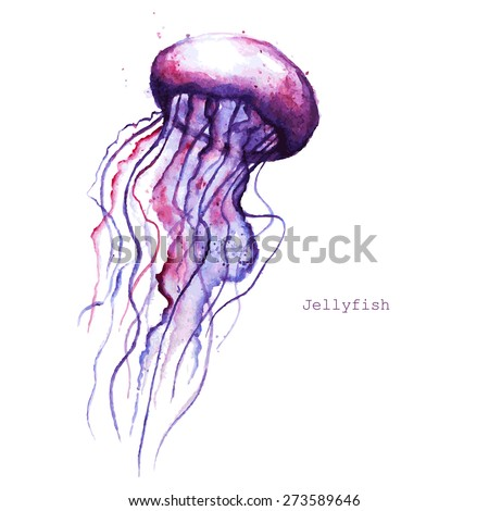 Vector Watercolor Jellyfish Stock Vector (Royalty Free) 273589646 ...