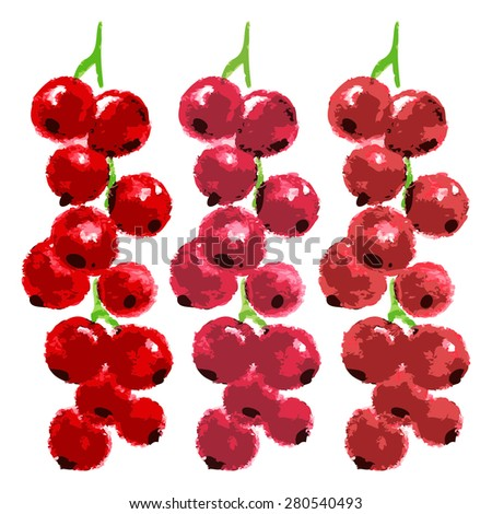 vector watercolor red currant