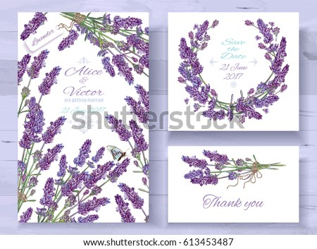 Vector wedding invitations set with lavender flowers on white background. Romantic tender floral design for wedding invitation, save the date and thank you cards. With place for text