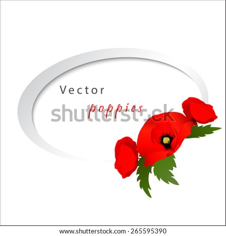Vector white background with red flowers poppies