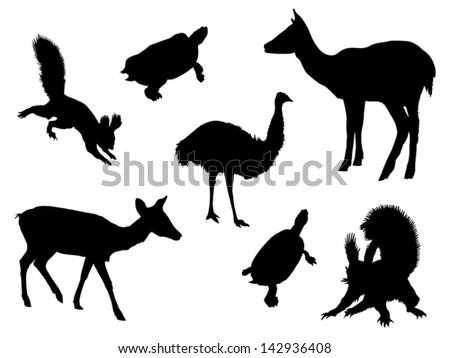Vector wild isolated animals set 2 - stock vector