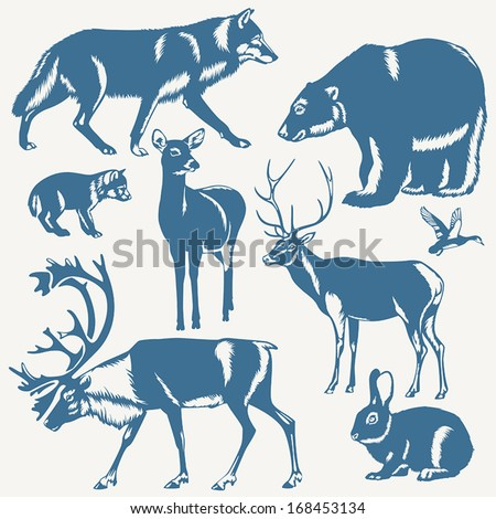 vector wild northern animals and bird on a white background - stock vector
