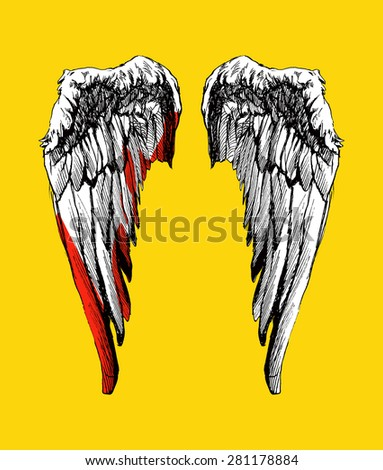Vector wings. Hand drawn. Vector background - stock vector