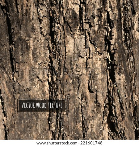 Vector Wood Texture, Vector Illustration - stock vector