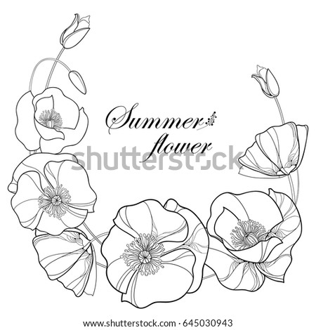 Poppy Outline Stock Images Royalty Free Images Amp Vectors