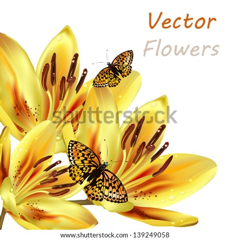 Vector yellow orange lily isolated on white for design - stock vector