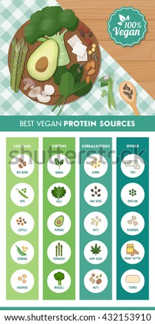 Vegan protein food sources infographic with food icons and ingredients on the kitchen table - stock vector
