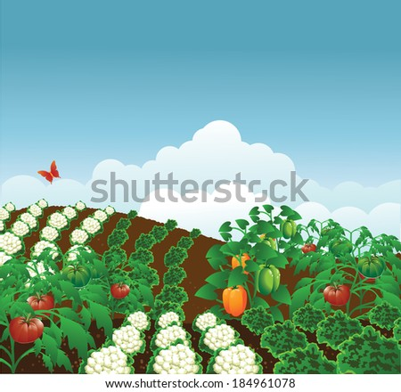 Vegetable garden. EPS 10 vector, grouped for easy editing. No open shapes or paths. - stock vector
