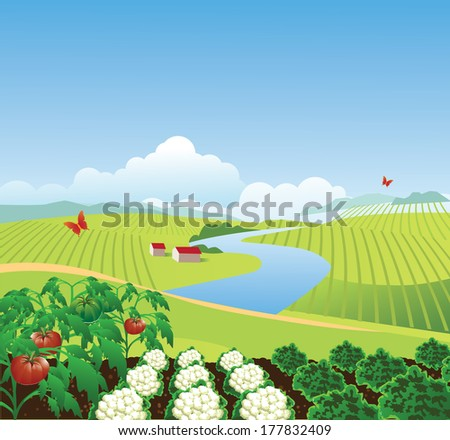 Vegetable Garden Farm Background EPS 10 Vector Grouped For Easy Editing No Open Shapes