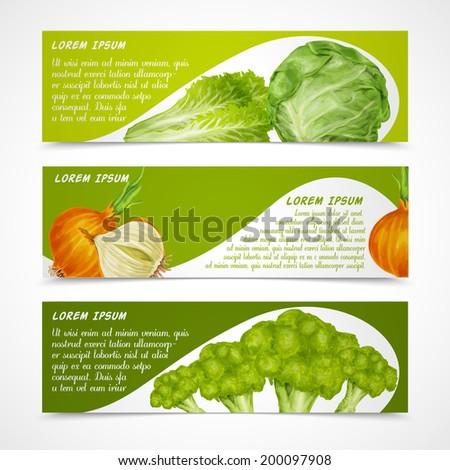 Vegetable organic food banners horizontal with salad onion broccoli isolated vector illustration. - stock vector