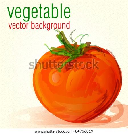 Vegetable tomato vector background - stock vector
