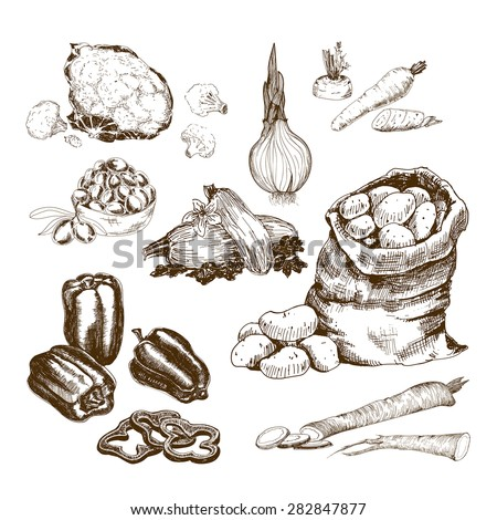 Vegetables collection. Set of hand drawn graphic illustrations.