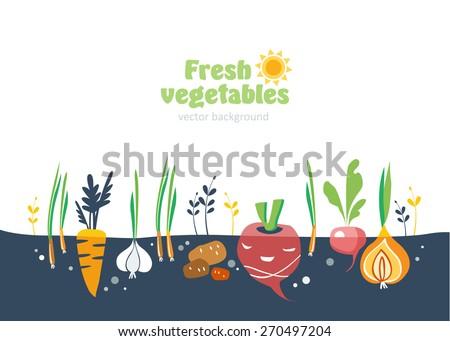 Vegetable Garden Stock Images RoyaltyFree Images Vectors